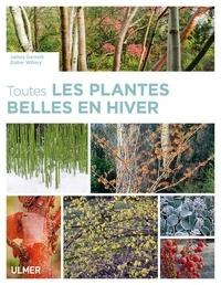James Garnett et Didier Willery - Toutes les plantes belles en hiver.