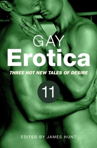 James Hunt - Gay Erotica, Volume 11 - Three great new stories.