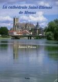 James Prieux - La cathédrale Saint-Etienne de Meaux.