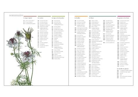 Flora. Un fascinant voyage au coeur du monde végétal