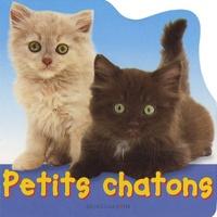 Jane Burton - Petits chatons.