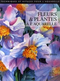 Janet Whittle - Fleurs et Plantes à l'aquarelle.