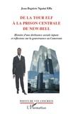 Jean-Baptiste Nguini Effa - De la tour Elf à la prison centrale de New-Bell - Histoire d'une déchéance sociale injuste et réflexions sur la gouvernance au Cameroun.