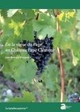 Jean-Bernard Marquette - De la vigne du pape au Château Pape Clément.