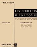 Jean Brizon et Jean Castaing - Les Feuillets d'anatomie - Tome 13, Vaisseaux du cou.