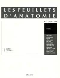 Jean Brizon et Jean Castaing - Les Feuillets d'anatomie - Tome 14, Thorax.