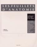 Jean Brizon et Jean Castaing - Les Feuillets d'anatomie - Tome 11, Ostéologie de la tête, deuxième partie : ostéologie du tronc.