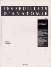 Jean Brizon et Jean Castaing - Les Feuillets d'anatomie - Tome 3, Arthrologie des membres : membres supérieur et inférieur.