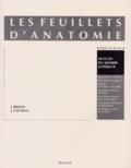 Jean Brizon et Jean Castaing - Les Feuillets d'anatomie - Tome 4, Muscles du membre supérieur.