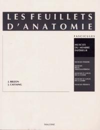 Jean Brizon et Jean Castaing - Les Feuillets d'anatomie - Tome 5, Muscles du membre inférieur.