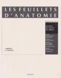 Jean Brizon et Jean Castaing - Les Feuillets d'anatomie - Tome 12, Muscles du cou et du tronc.