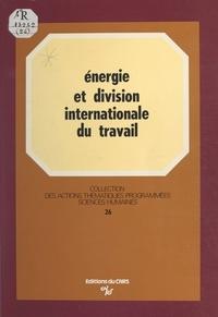Jean-Charles Hourcade - Énergie et division internationale du travail : essai de prospective des industries lourdes sur le pourtour méditerranéen.