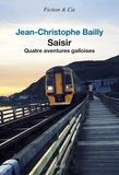 Jean-Christophe Bailly - Saisir - Quatre aventures galloises.