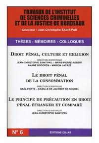 Histoiresdenlire.be Droit pénal, culture et religion ; Le droit pénal de la consommation ; Le principe de précaution en droit pénal étranger et comparé Image