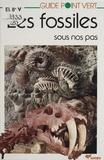 Jean-Claude Fischer - Les Fossiles sous nos pas.