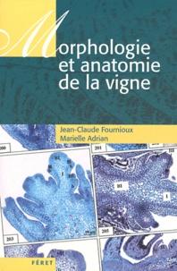 Morphologie et anatomie de la vigne.pdf