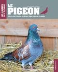 Jean-Claude Périquet - Le pigeon.