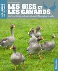 Jean-Claude Périquet - Les oies et les canards.