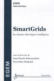 Jean-Claude Sabonnadière et Nouredine Hadjsaïd - SmartGrids - Les réseaux électriques intelligents.