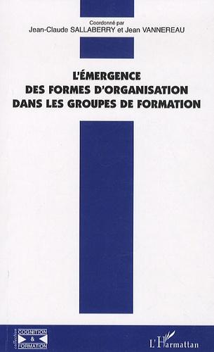 Jean-Claude Sallaberry et Jean Vannereau - L'émergence des formes d'organisation dans les groupes de formation.