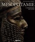 Jean-Daniel Forest - Mésopotamie - L'apparition de l'État, VIIe-IIIe millénaires.