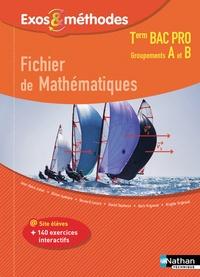 Jean-Denis Astier et Olivier Aumaire - Fichier de mathématiques Tle Bac Pro Groupement A et B Exos & Méthodes.