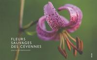 Jean Du Boisberranger - Fleurs sauvages des Cévennes.