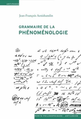 Jean-François Aenishanslin - Grammaire de la phénoménologie.