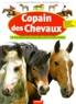 Jean-François Ballereau et Gilles Delaborde - Copain des chevaux.