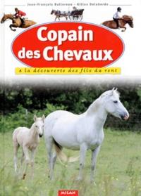 Jean-François Ballereau et Gilles Delaborde - Copain des chevaux - A la découverte des fils du vent.