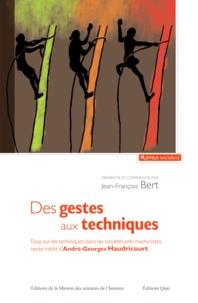 Jean-François Bert - Des gestes aux techniques.