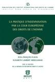 Jean-François Flauss et Elisabeth Lambert Abdelgawad - La pratique d'indemnisation des droits de l'Homme.