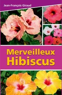 Jean-François Giraud - Merveilleux Hibiscus.