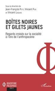 Jean-François Petit et Vincent Puig - Boîtes noires et gilets jaunes - Regards croisés sur la socialité à l'ère de l'anthropocène.