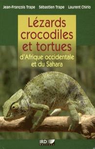 Alixetmika.fr Lézards, crocodiles et tortues d'Afrique occidentale et du Sahara Image