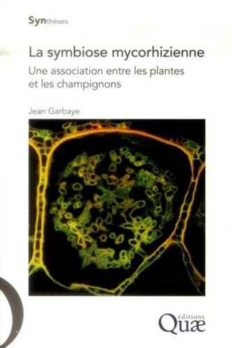 La symbiose mycorhizienne. Une association entre les plantes et les champignons