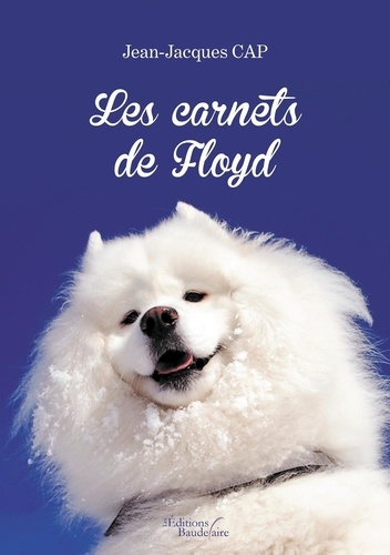 Jean-Jacques Cap - Les carnets de Floyd.