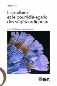 Accentsonline.fr L'armillaire et le pourridié-agaric des végétaux ligneux Image