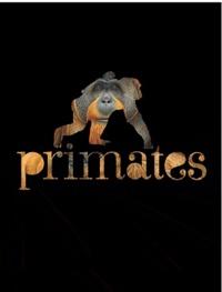 Jean-Jacques Petter - Primates.