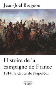 Jean-Joël Brégeon - Histoire de la campagne de France - La chute de Napoléon.
