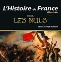 Jean-Joseph Julaud - L'histoire de France illustrée pour les nuls.