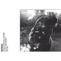 Jean-Léon Pallandre et Alain Savouret - Bribes. 1 CD audio