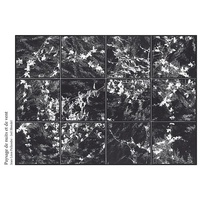 Jean-Léon Pallandre et Joël Blondel - Paysage de nuits et de vent. 1 CD audio