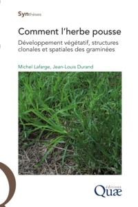 Jean-Louis Durand et Michel Lafarge - Comment l'herbe pousse - Développement végétatif, structures clonales et spatiales des graminées.