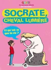 Jean-Louis Gardette - Socrate, cheval lumière.