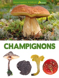 Jean-Louis Lamaison et Jean-Marie Polese - Encyclopédie visuelle des champignons.