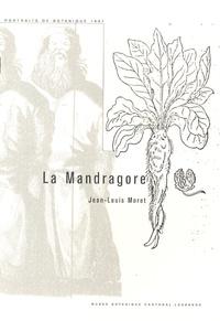 Lesmouchescestlouche.fr La Mandragore Image