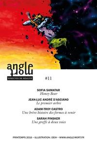 Jean-Luc André d'Asciano et Adam-Troy Castro - Angle Mort numéro 11.