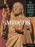 Jean-Luc Bouilleret et Aurélien André - Amiens - La grâce d'une cathédrale.