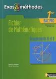 Jean-Luc Dianoux et Muriel Dorembus - Fichier de Mathématiques 1e Bac Pro Groupements A et B - Programme 2010.